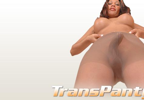 transpantyhose sasha nasty pantyhose shemale lady